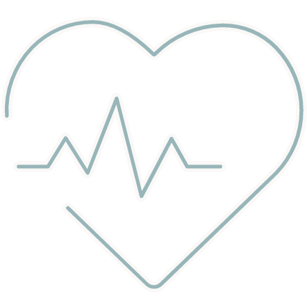 Icon representing - Cardiovascular Health